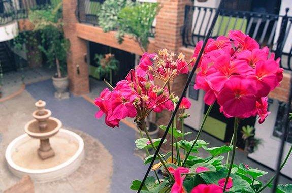 Largas Estadías Hotel Salento Real Eje Cafetero